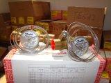 Kleppen van de Uitbreiding van Danfoss de Thermostatische Tex2 (068Z3229)