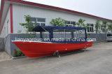 Pesca profonda della vetroresina delle barche di Liya V 25FT con il motore