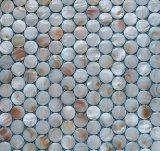 Mosaico redondo del shell 20 blancos del agua dulce