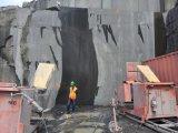 직업적인 다이아몬드 철사는 화강암 채석장을%s 기계를 보았다--Tsy-75g