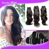 100% menschliches peruanisches die Jungfrau-Haar-rollt natürliches Wellen-Haar en gros zusammen
