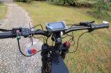 Moto 2017 électrique électrique du vélo 72V 120kph de Leili 8000W à vendre
