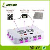 600W 900W 1000W 1200W LED Pflanze wachsen Licht ausgebautes volles Spektrum-wachsendes Innenlicht mit doppelten Chips 10W