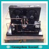 Élément se condensant refroidi par air chaud de réfrigération de compresseur de Zb de défilement de la vente R404A Copeland de 2~15HP