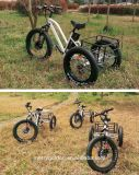 China 24pulgadas 48V 500W 3 Rueda triciclo de carga eléctrica para los adultos