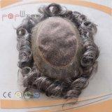 회색 머리 PU 가장자리 Mens 가발 (PPG-l-01941)