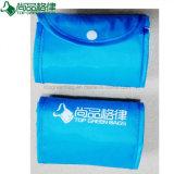 Sac à provisions se pliant en nylon réutilisé de polyester bon marché d'Eco avec la poche instantanée