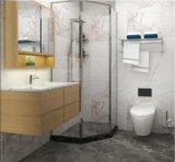 Sally A1818 de haute qualité Salle de Bain Préfabriquées les gousses d'une pièce d'une douche Salle de bains modulaire