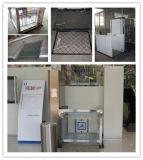 Rollstuhl-Plattform-kleiner Hauptaufzug für die untauglichen oder alten Leute