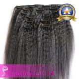 Kinky droite 7 pcs Clip Indian Hair Extension (YM-KCE-004)