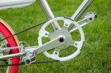 Bazzar 빨간 전기 자전거 Tsinova 이온 Panasonic 건전지의 Moden 작풍
