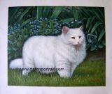 Ritratto di Cat