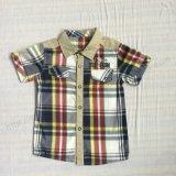 Chemise de garçon populaire dans les vêtements pour enfants Sq-6239