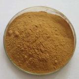 ハーブのエキスの自然なHorsetailのエキスの有機性無水ケイ酸7% CAS No.: 71011-23-9