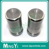 De aangepaste Perforerende Stempel van het Aluminium van de Precisie DIN (UDSI0172)
