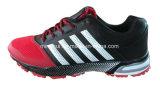 Le sport de beaucoup de couleurs chausse des espadrilles de chaussures de course
