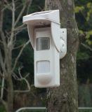 Rivelatori di movimento solari esterni dell'allarme di telecomando con l'allarme dell'indicatore luminoso & del suono