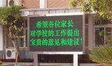 Sola visualización al aire libre del texto del módulo LED de la pantalla del verde P10 de la INMERSIÓN