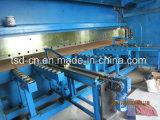 Freno della pressa idraulica di CNC in macchina piegatubi doppio/in tandem (2-WE67K-300/6000)