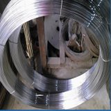 Galvanisierter ovaler Draht und heißes BAD Stahldraht