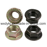 Noix galvanisée de bride d'hexagone DIN 6923