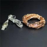 USB da corda da luz feericamente de fio de cobre dos 10m 100LED mini operado