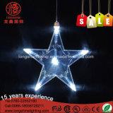 新しい到着のシカ形のたる製造人ワイヤーLEDストリングライトクリスマスの装飾