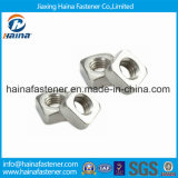DIN557 스테인리스 Steel304/316 정연한 견과