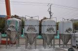 500L高品質の発酵ビールタンク