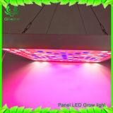 L'indicatore luminoso d'attaccatura blu rosso di Glebe 45W LED per la pianta d'appartamento LED coltiva l'indicatore luminoso