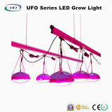 Hot-Sale 140W UFO LED Grow Light for Green House Plants