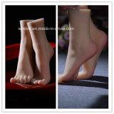 38#Silicone pie falso femenino, Interno-Hueso dentro del modelo de los pies