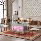 Новые таблицы и стул нержавеющей стали света цвета конструкции