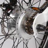 女性のためのMagの車輪が付いている20インチの電気バイク