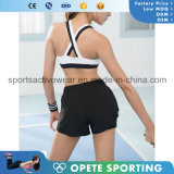 Soem-freies Beispieleignung heißer kundenspezifischer Dri passende Frauen-reizvoller Sport-Büstenhalter