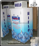 Eisspeicher-Kasten mit Soem-Aussehen