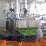 Салат с горячим воздухом сушка производственной линии/овощные сушки производственной линии/осушителя