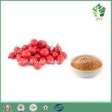 Organische Weißdorn-Frucht-Auszug-Flavon 5%-40%