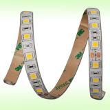 60LEDs/M SMD5050 wärmen weiße 3000k konstante Seil-Lichter des Bargeld-LED