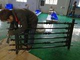 Rete fissa ornamentale d'acciaio galvanizzata Ce/SGS per il balcone