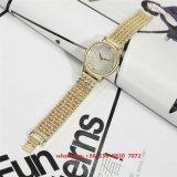 High-End het Horloge Fs467 van de Modieuze Vrouwen van de Legering