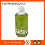 shampooing neuf de chocolat de la qualité 250ml