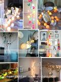 Marcação& RoHS luz Aprovados String com Flor de fibra para decoração