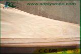 Impiallacciatura rotativa per le schede, mobilia, decorazione di Okoume del taglio