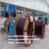 A tensão média XLPE isolou o único cabo distribuidor de corrente Sheathed PVC do núcleo