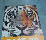 La double publicité latérale extérieure de haute résolution de drapeau de vinyle d'impression (SS-VB113)