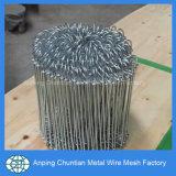 Kurbelgehäuse-Belüftung beschichtete galvanisierten doppelten Schleifen-Gleichheit-Draht-Fabrik-Preis