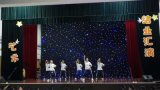 LED-Stern-Vorhang-blauer und weißer Stadiums-Hochzeitsfest-Hintergrund