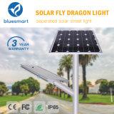 한세트 80W 또는 옥외 센서 밤 가로등을 점화하는 통합 태양 제품 LED 정원