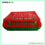 Transporte de la estructura de malla de polipropileno de granja pollo cesta
